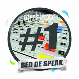 Bed de Speak Electro 2017-1