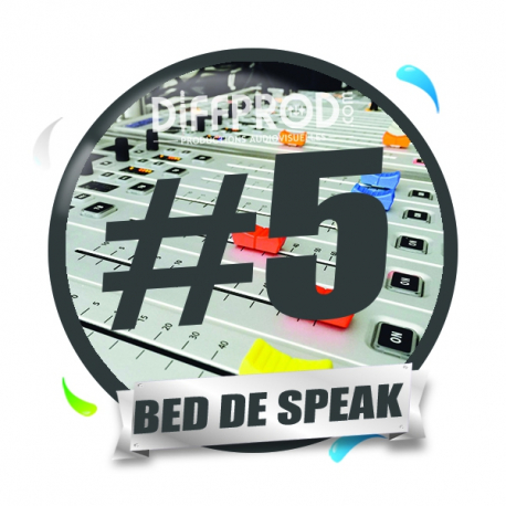 Bed de Speak Electro 2017-5