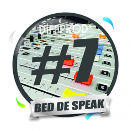 Bed de Speak Electro 2017-7