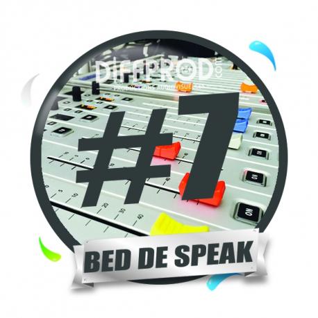 Bed de Speak Electro 2017-7